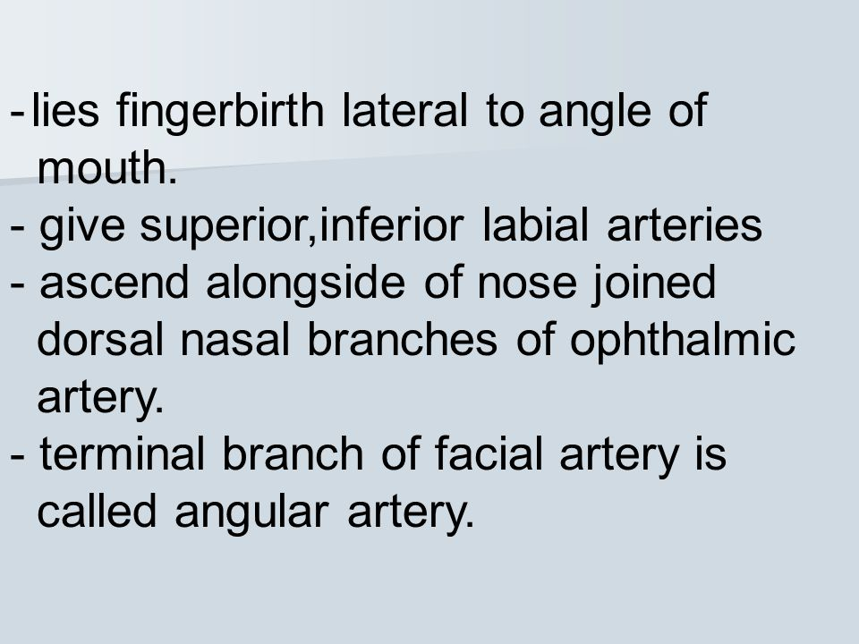 - lies fingerbirth lateral to angle of mouth.