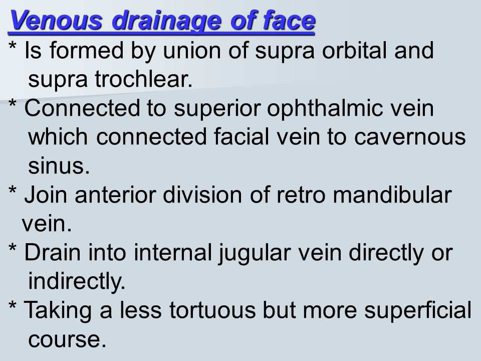 Venous drainage of face