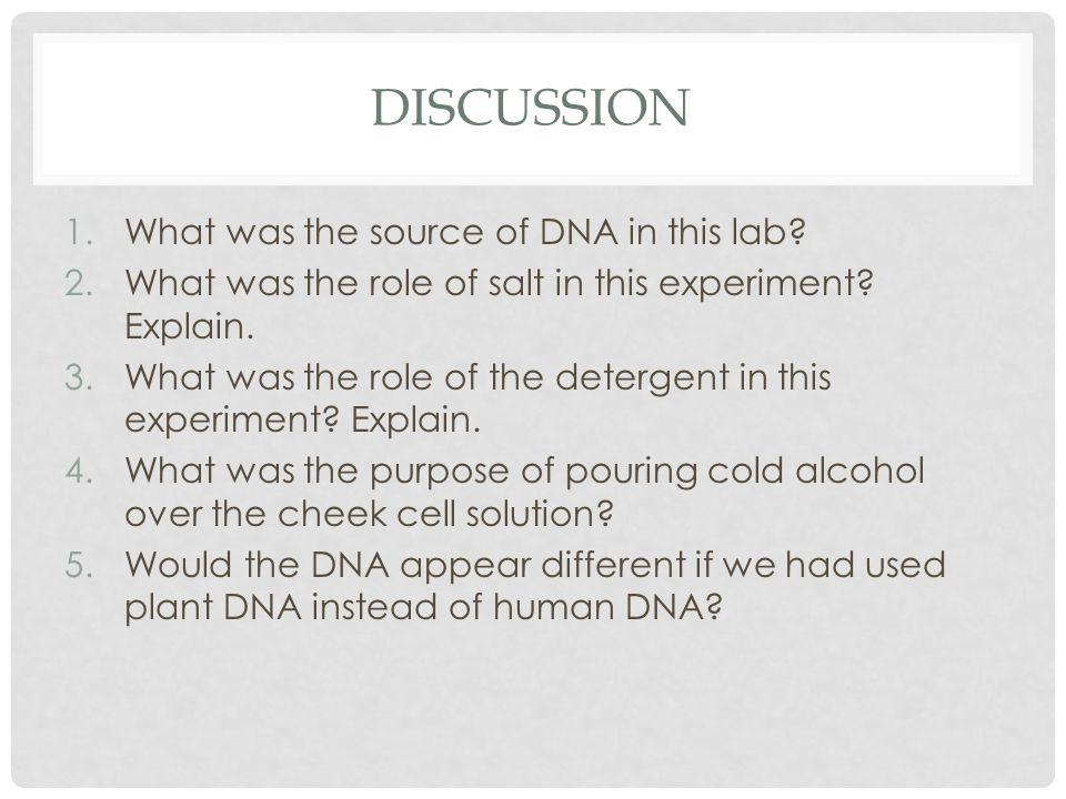 Discussion What was the source of DNA in this lab