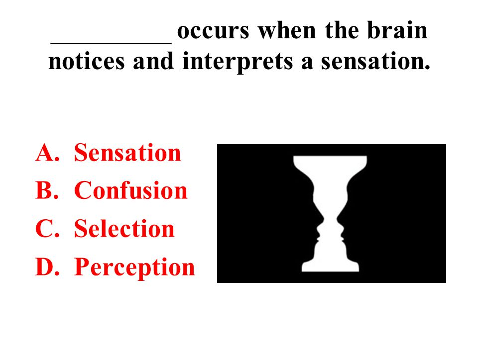_________ occurs when the brain notices and interprets a sensation.
