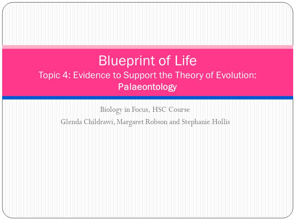 Blueprint of Life Topic 4: Evidence to Support the Theory of Evolution: Palaeontology