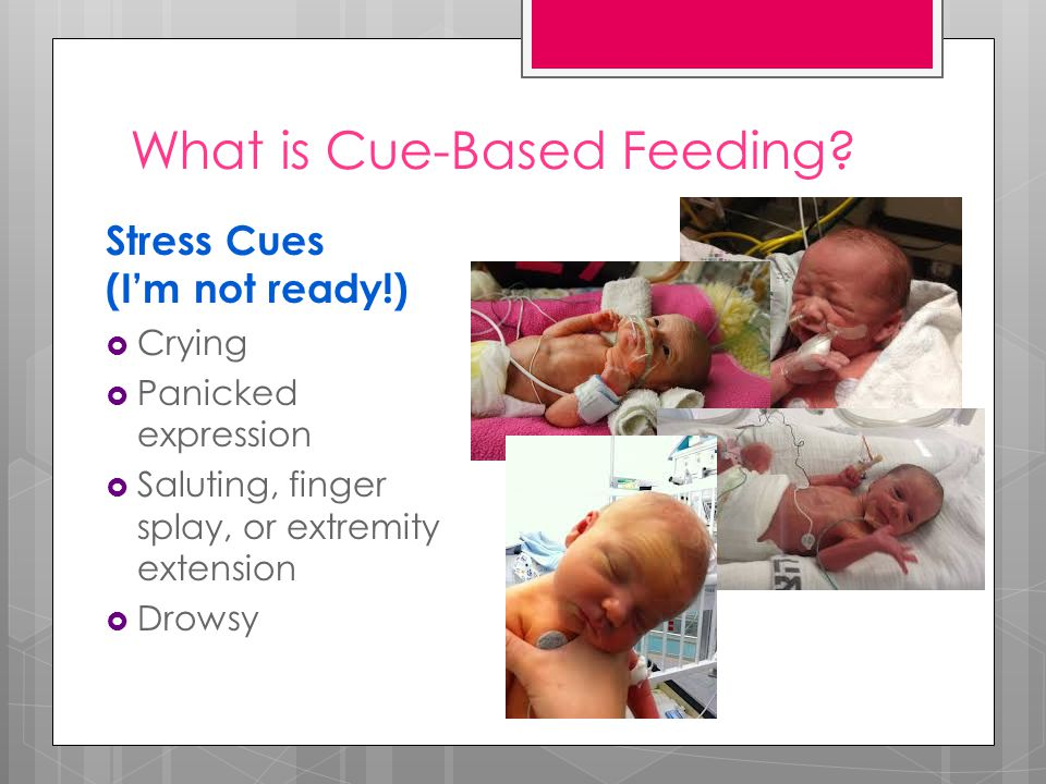 What is Cue-Based Feeding