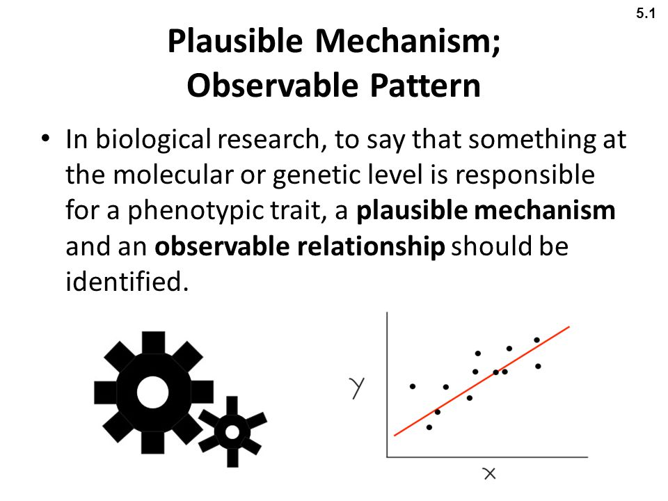 Plausible Mechanism; Observable Pattern