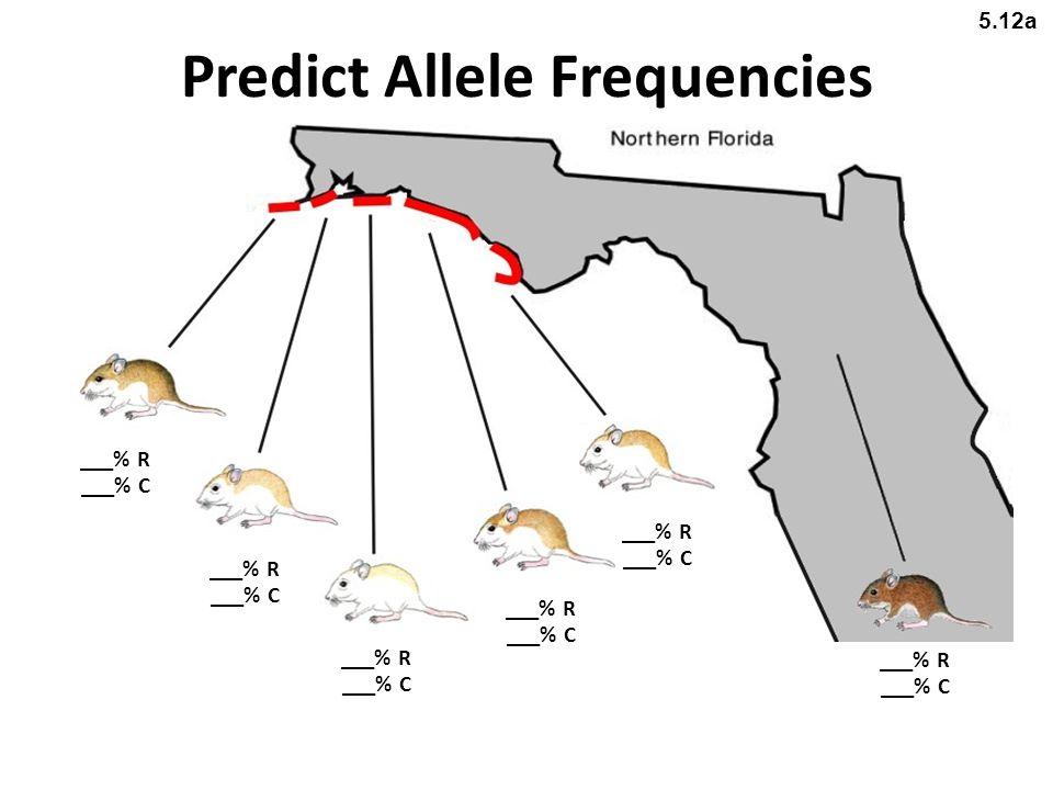 Predict Allele Frequencies