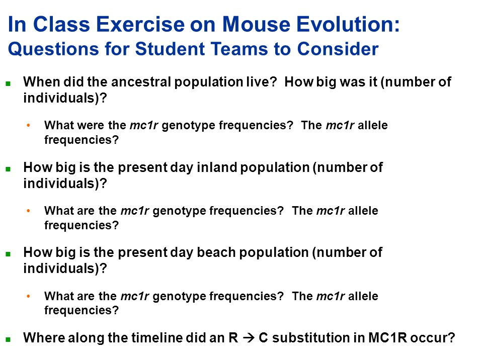 In Class Exercise on Mouse Evolution: Questions for Student Teams to Consider