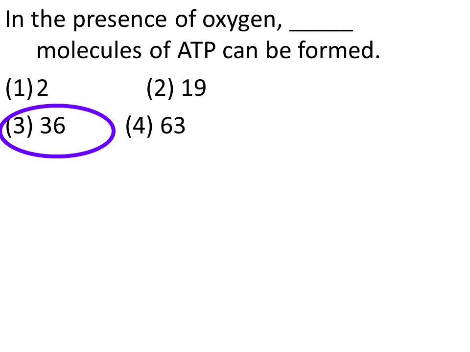 In the presence of oxygen, _____ molecules of ATP can be formed.