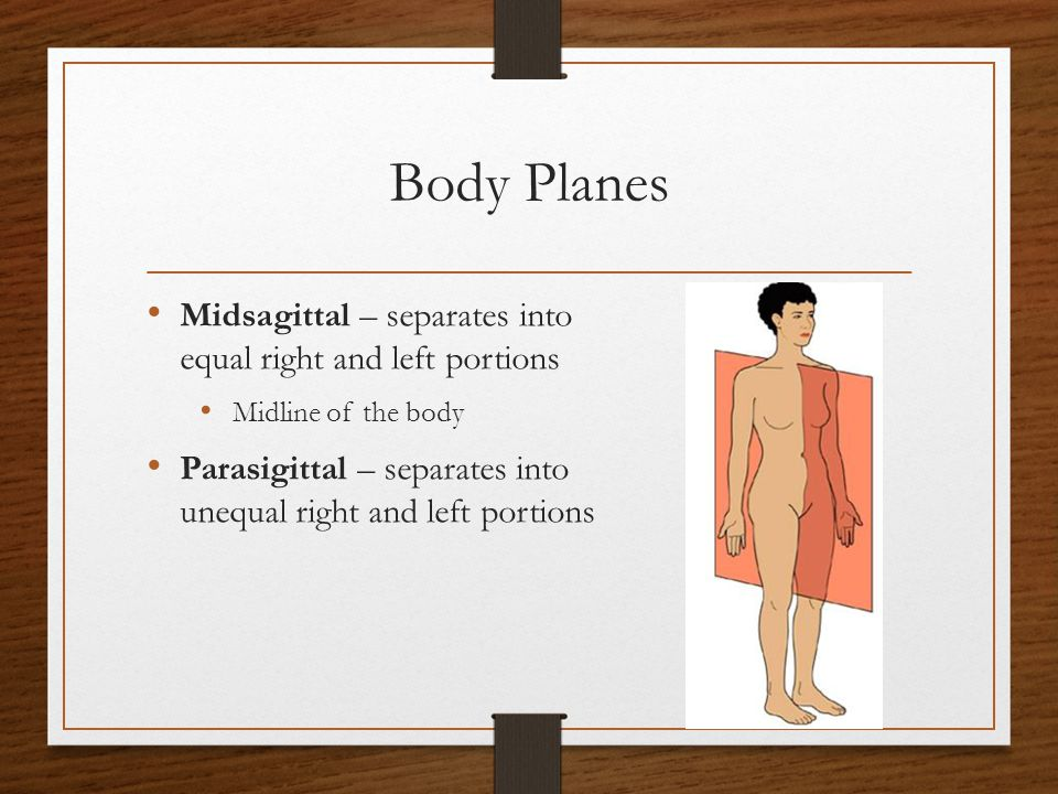 Body Planes Midsagittal – separates into equal right and left portions