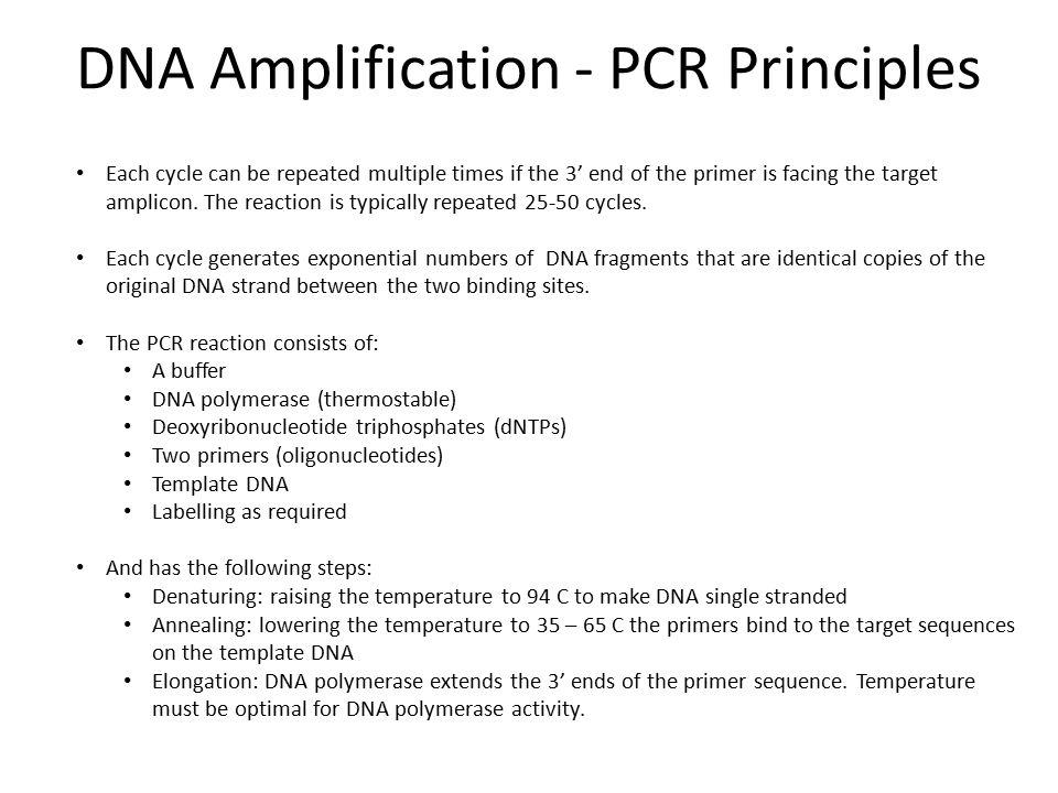 DNA Amplification - PCR Principles