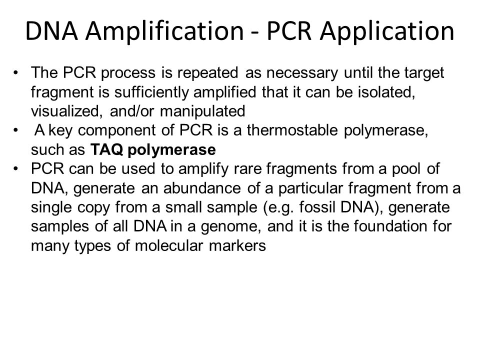 DNA Amplification - PCR Application