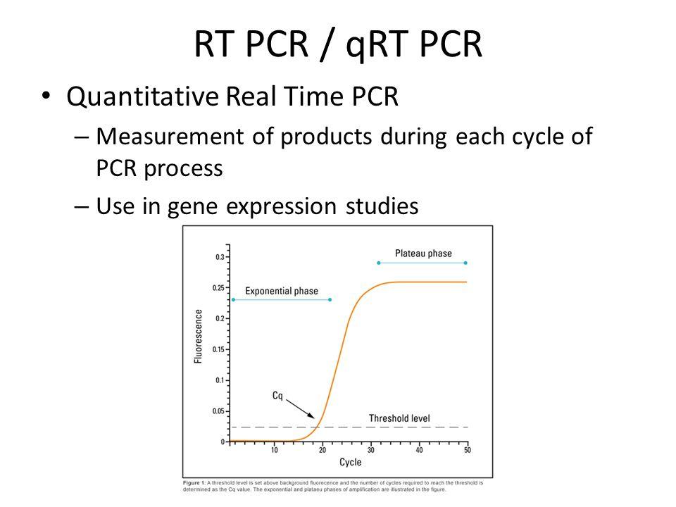 RT PCR / qRT PCR Quantitative Real Time PCR
