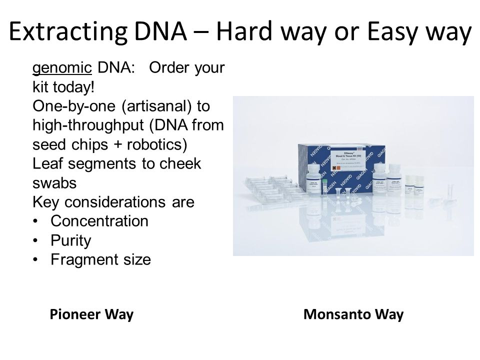 Extracting DNA – Hard way or Easy way