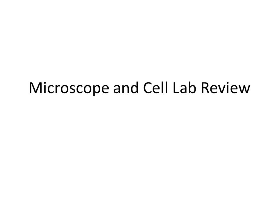 Microscope and Cell Lab Review