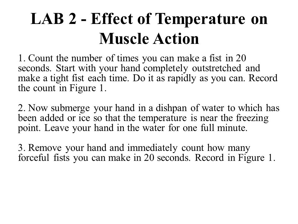 LAB 2 - Effect of Temperature on Muscle Action