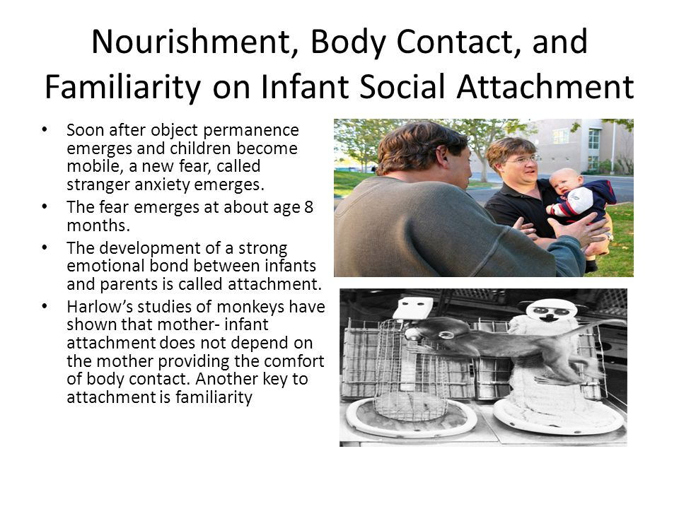 Nourishment, Body Contact, and Familiarity on Infant Social Attachment