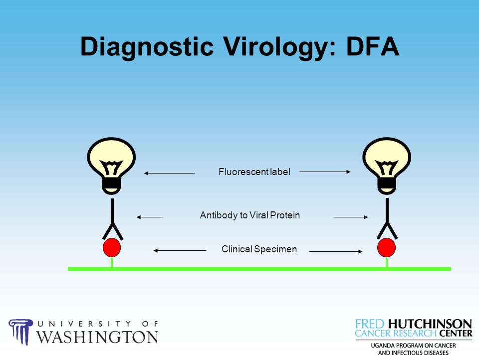 Diagnostic Virology: DFA