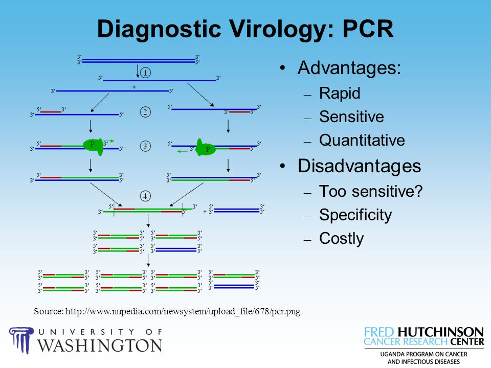 Diagnostic Virology: PCR