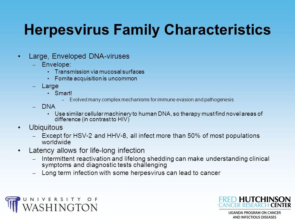 Herpesvirus Family Characteristics