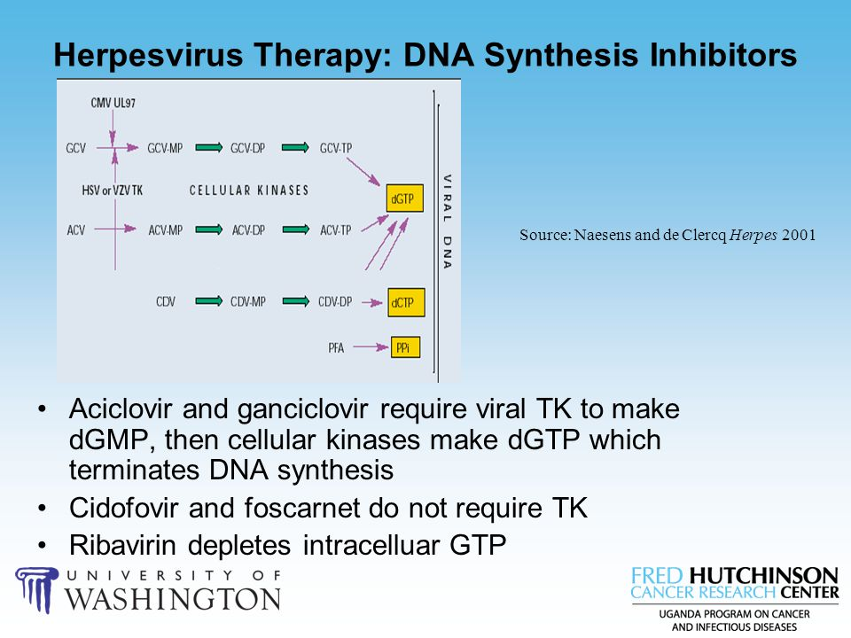 Herpesvirus Therapy: DNA Synthesis Inhibitors