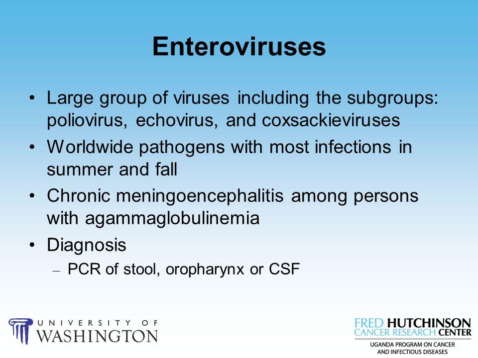 Enteroviruses Large group of viruses including the subgroups: poliovirus, echovirus, and coxsackieviruses.