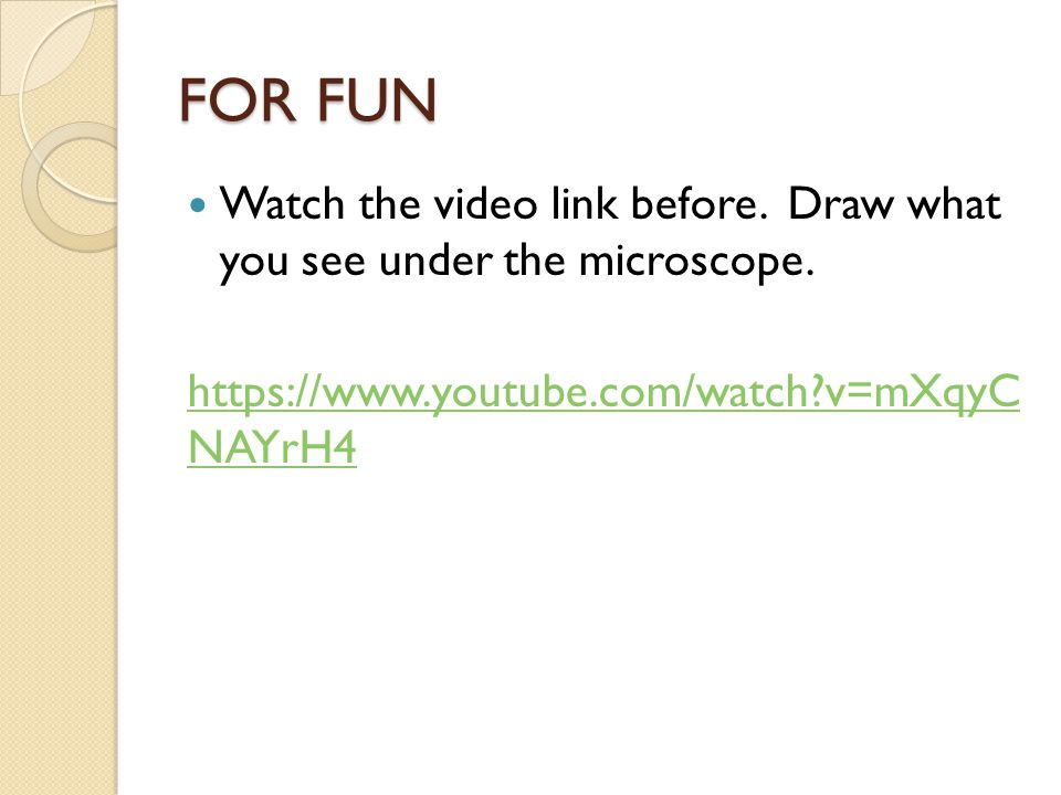 FOR FUN Watch the video link before. Draw what you see under the microscope.