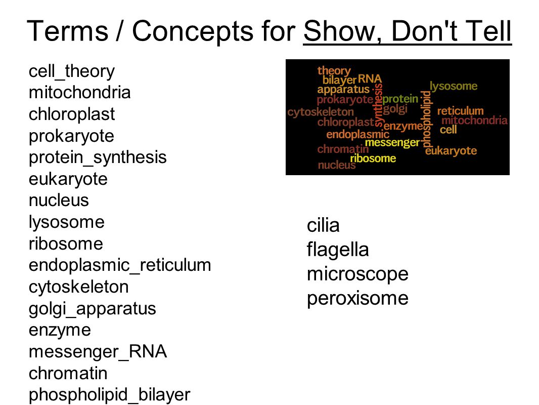 Terms / Concepts for Show, Don t Tell