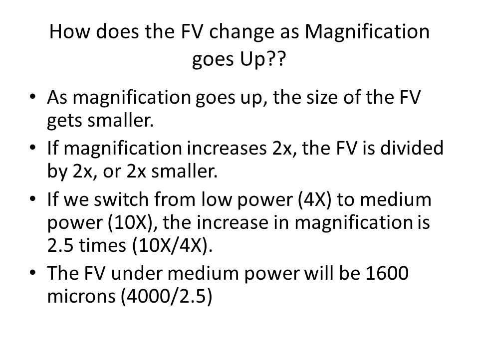 How does the FV change as Magnification goes Up