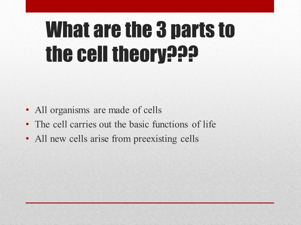 What are the 3 parts to the cell theory