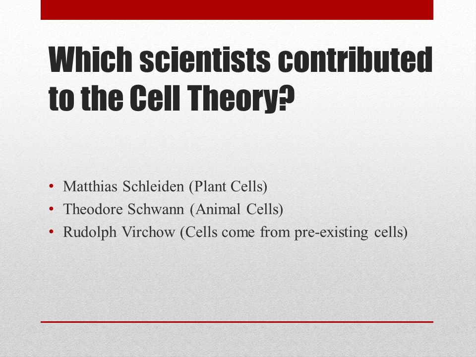 Which scientists contributed to the Cell Theory