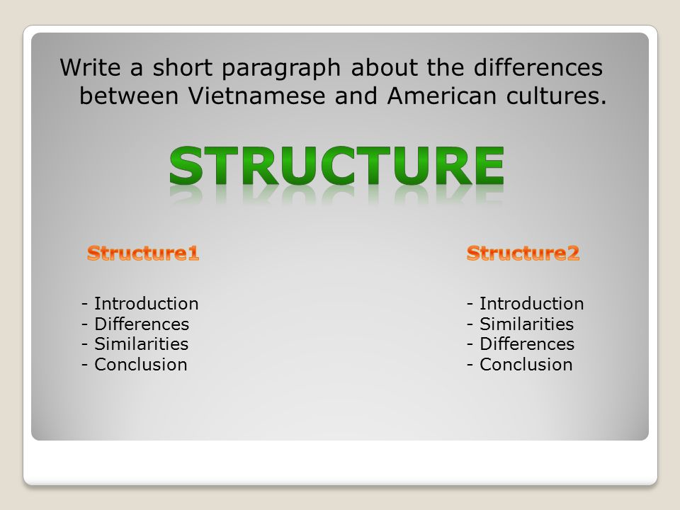 Write a short paragraph about the differences between Vietnamese and American cultures.