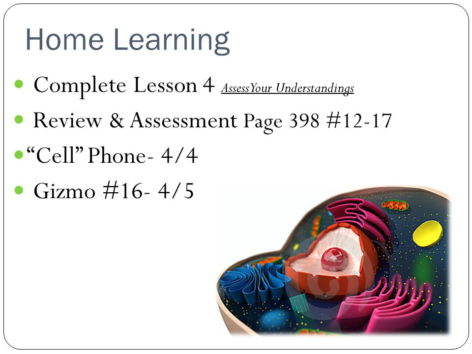 Home Learning Complete Lesson 4 Assess Your Understandings