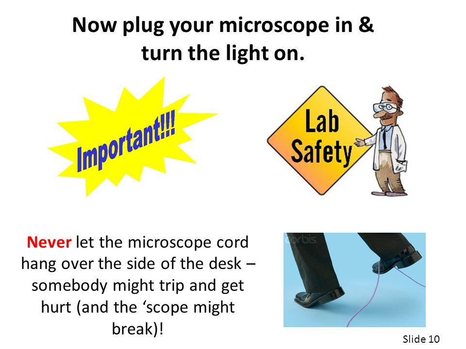 Now plug your microscope in & turn the light on.