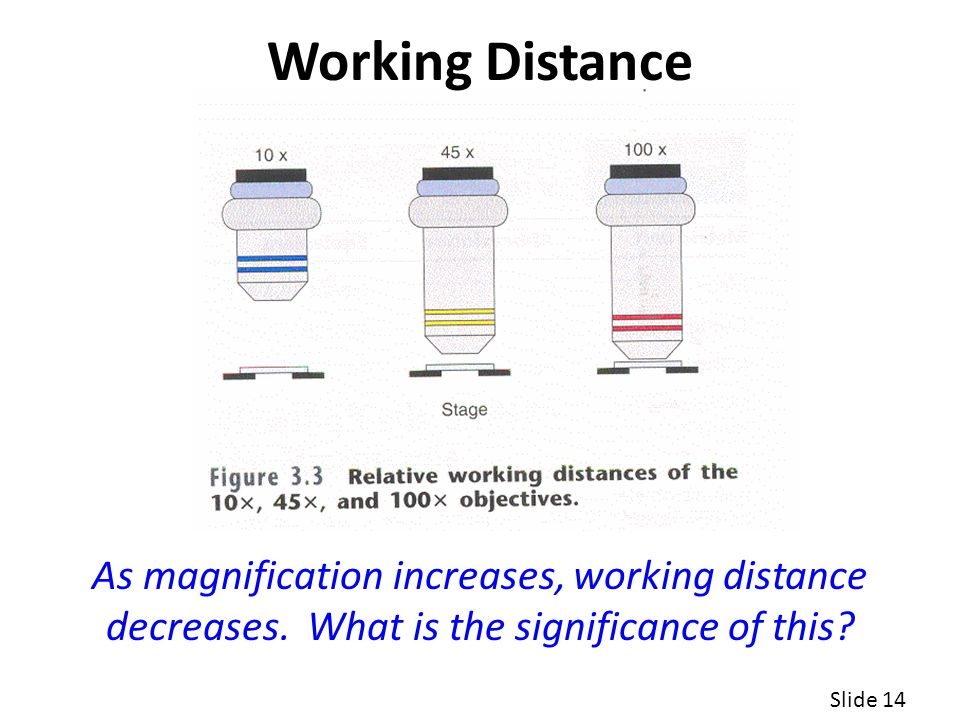 Working Distance As magnification increases, working distance decreases. What is the significance of this