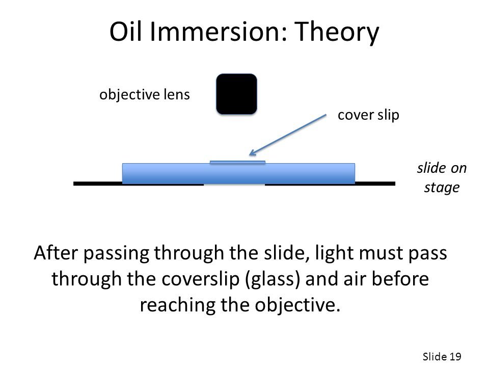Oil Immersion: Theory objective lens. cover slip. slide on stage.