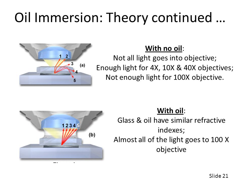 Oil Immersion: Theory continued …