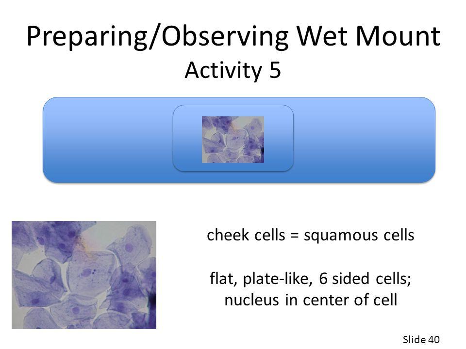 Preparing/Observing Wet Mount