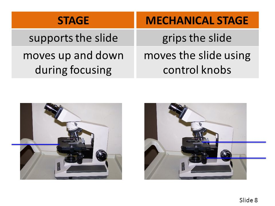 STAGE MECHANICAL STAGE