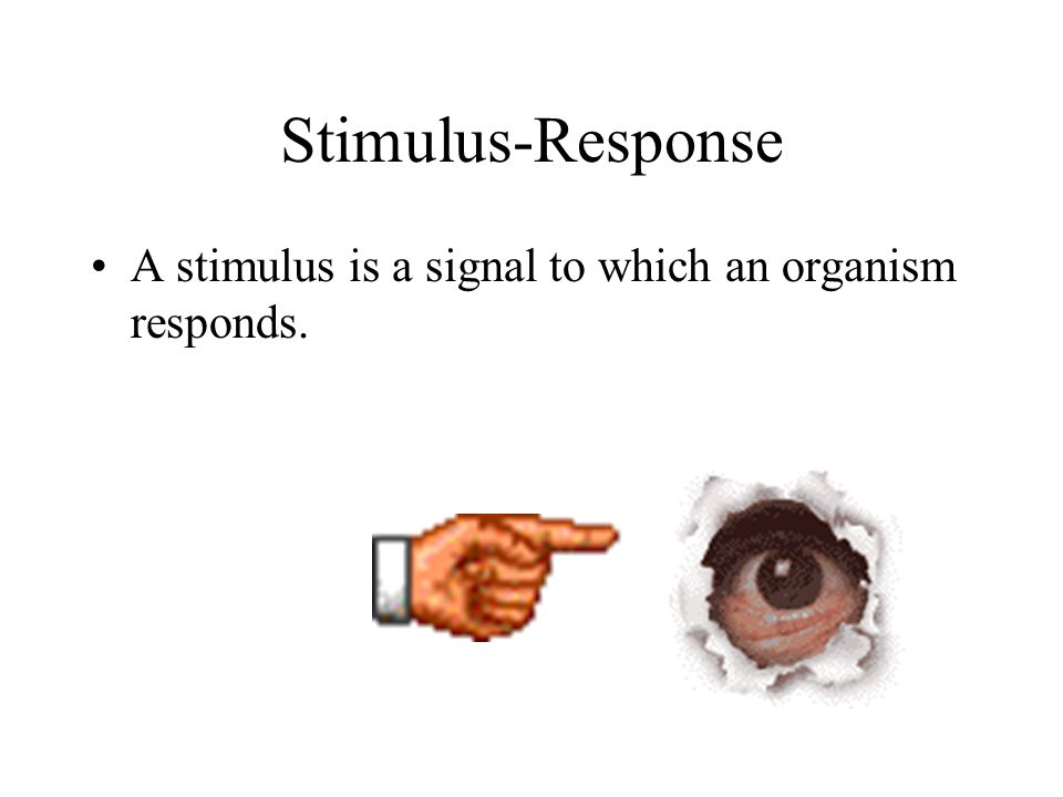 Stimulus-Response A stimulus is a signal to which an organism responds.