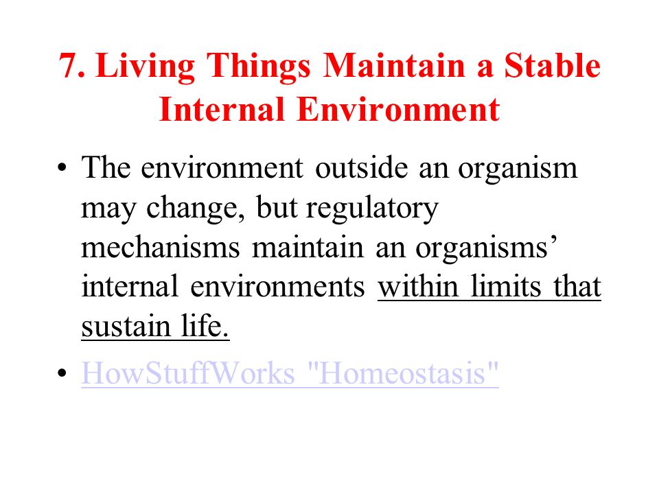 7. Living Things Maintain a Stable Internal Environment