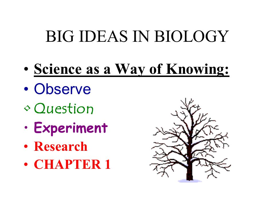 BIG IDEAS IN BIOLOGY Science as a Way of Knowing: Observe Question