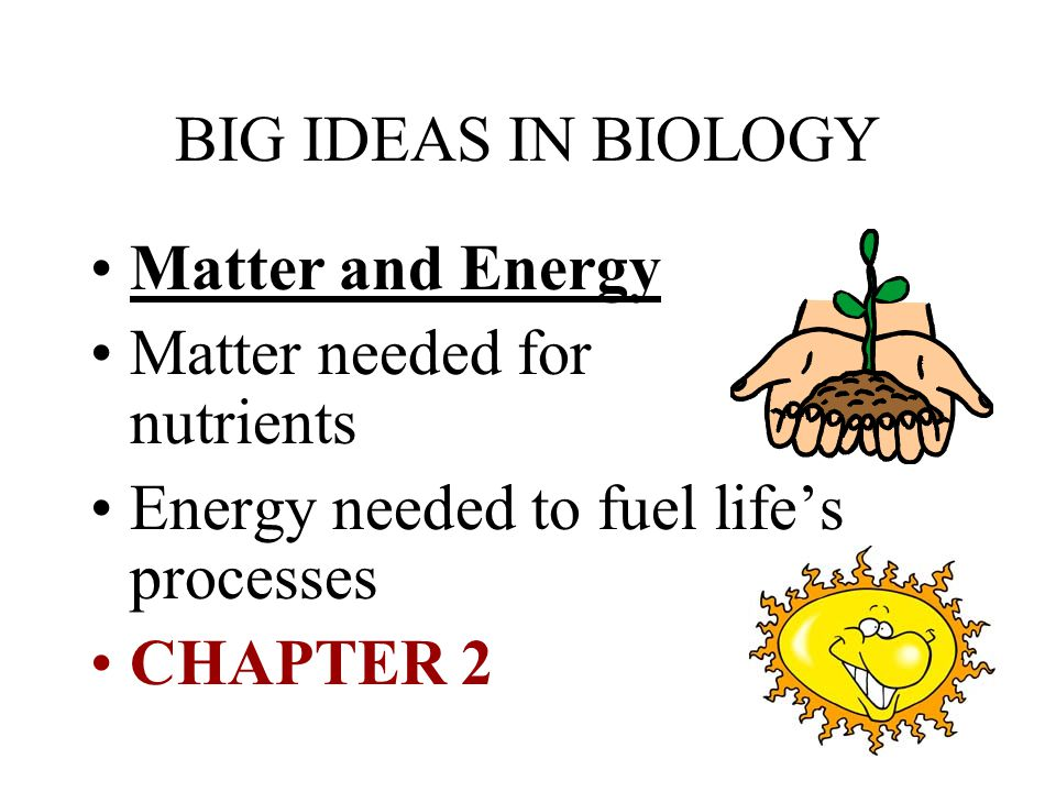 BIG IDEAS IN BIOLOGY Matter and Energy. Matter needed for nutrients. Energy needed to fuel life's processes.