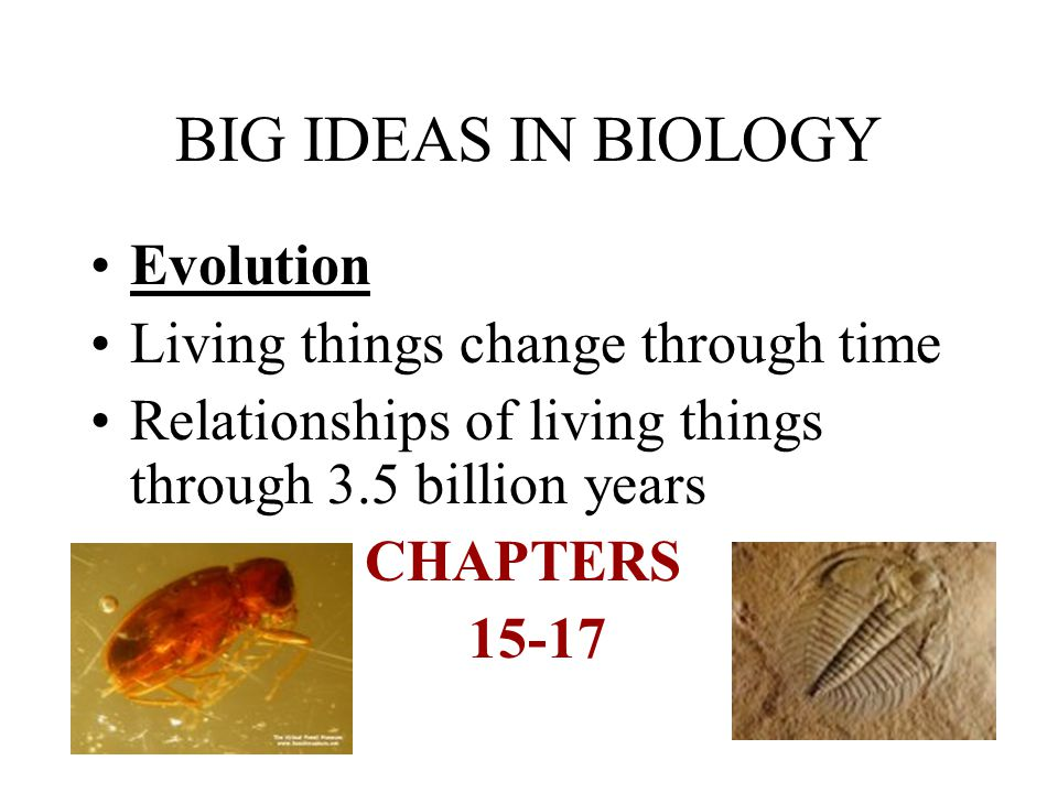 BIG IDEAS IN BIOLOGY Evolution Living things change through time