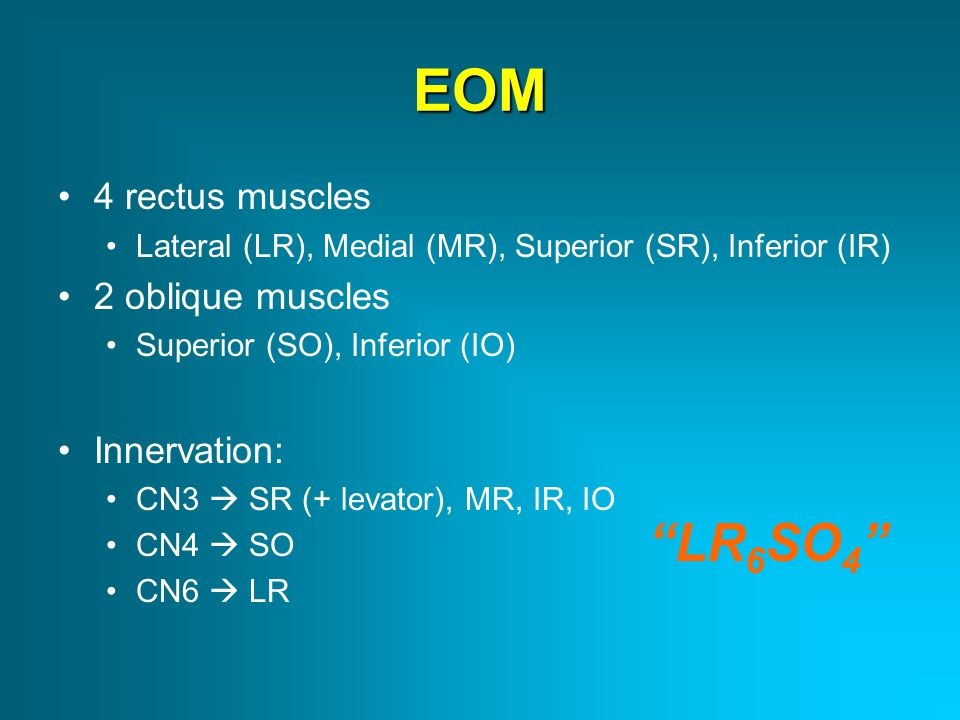 EOM LR6SO4 4 rectus muscles 2 oblique muscles Innervation: