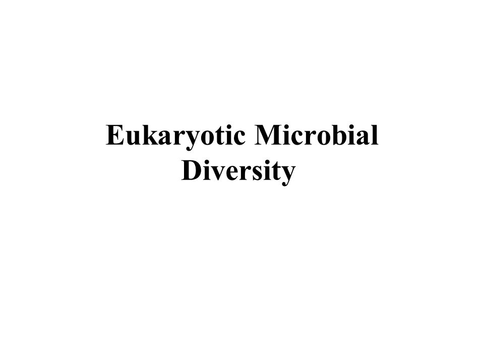 Eukaryotic Microbial Diversity