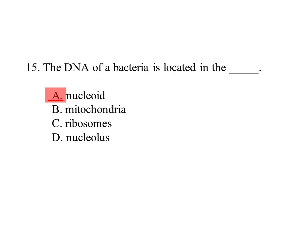 15. The DNA of a bacteria is located in the _____. A. nucleoid B