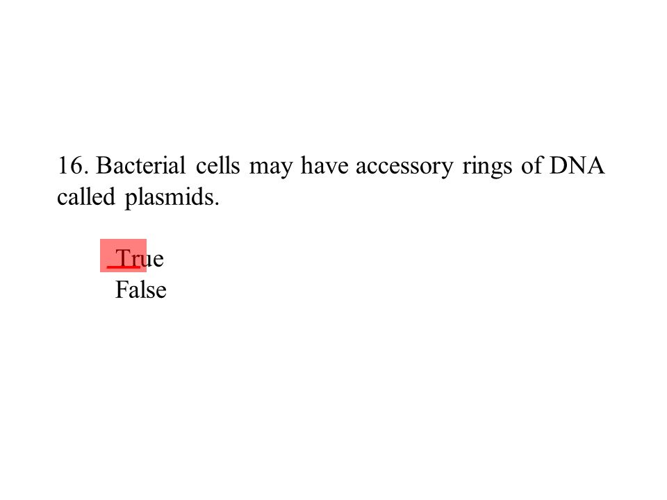 16. Bacterial cells may have accessory rings of DNA called plasmids