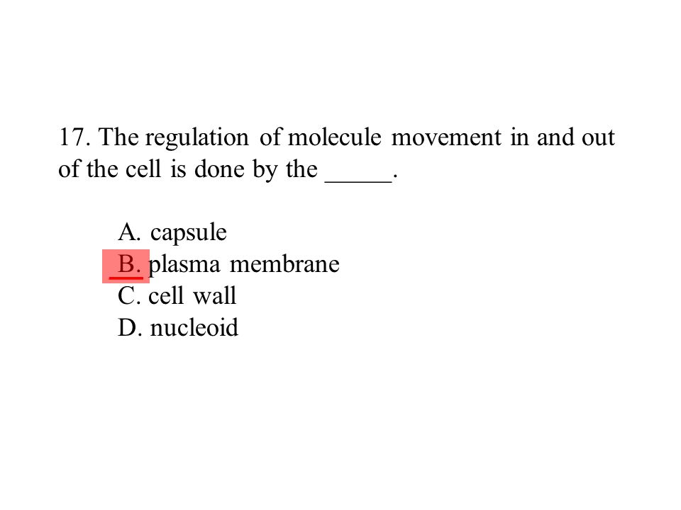 17. The regulation of molecule movement in and out of the cell is done by the _____. A. capsule B. plasma membrane C. cell wall D. nucleoid