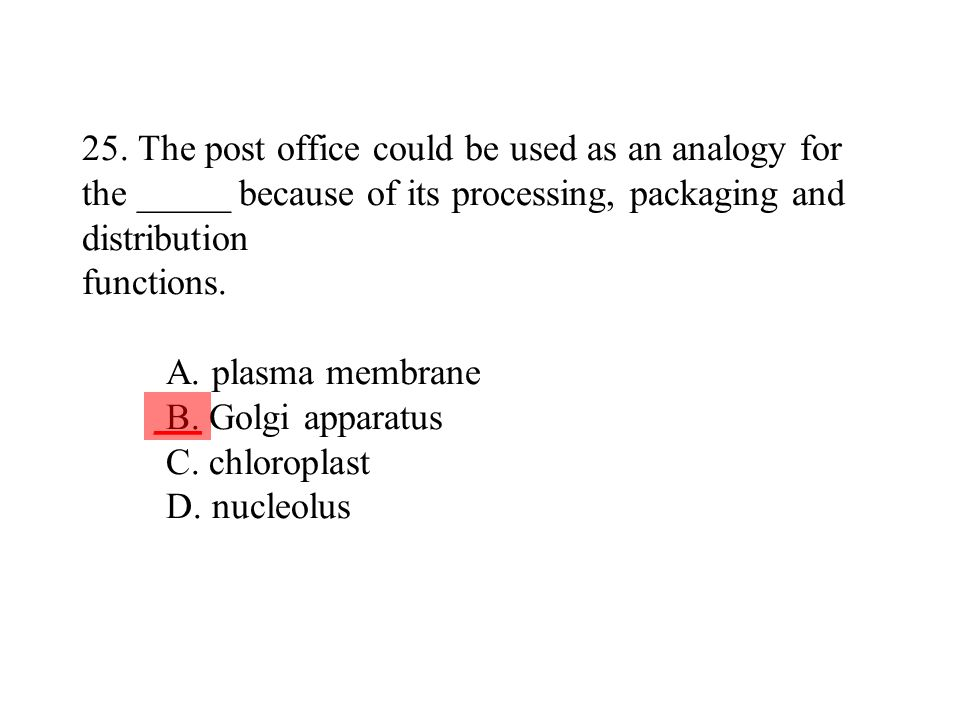 25. The post office could be used as an analogy for the _____ because of its processing, packaging and distribution functions. A. plasma membrane B. Golgi apparatus C. chloroplast D. nucleolus