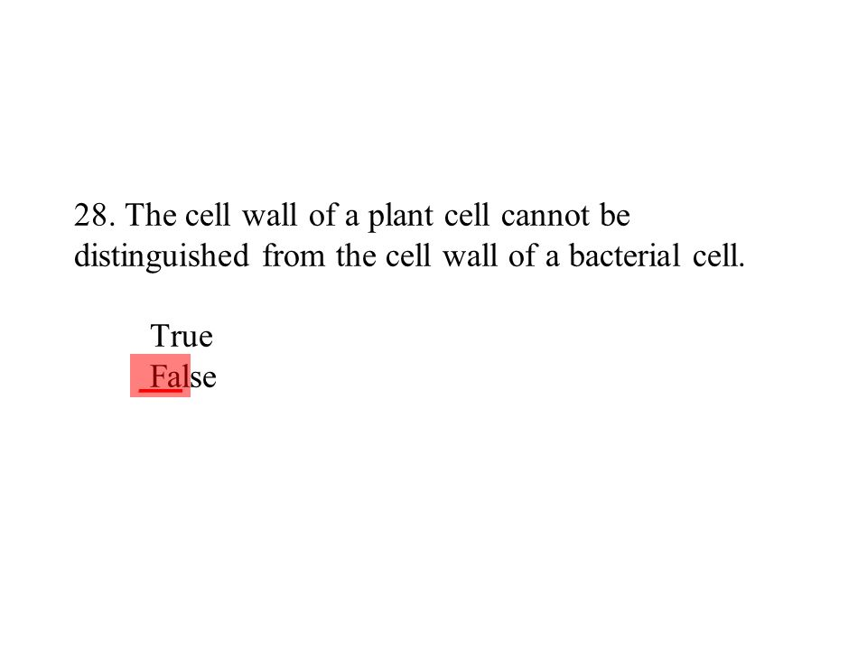 28. The cell wall of a plant cell cannot be distinguished from the cell wall of a bacterial cell. True False