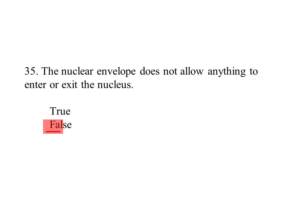 35. The nuclear envelope does not allow anything to enter or exit the nucleus. True False