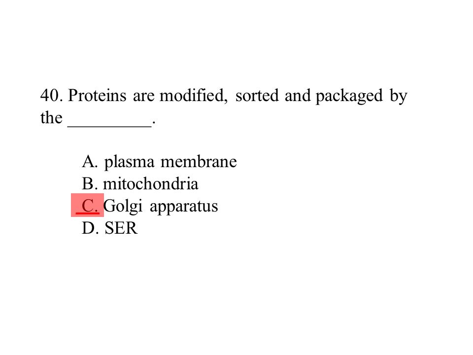 40. Proteins are modified, sorted and packaged by the _________. A